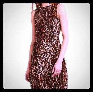LAUREN Ralph Lauren Animal Print Dress